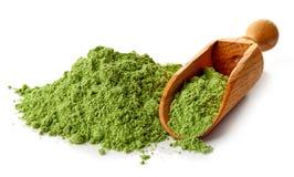Jeune herbe d'orge ou de blé, superfood de detox, fond blanc Images libres de droits