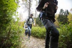 Jeune homme avec des amis trimardant sur Forest Trail Photographie stock libre de droits