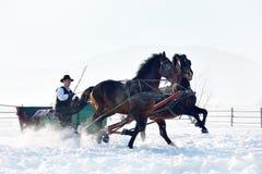 Jeune homme avec des chevaux extérieurs en hiver photo stock