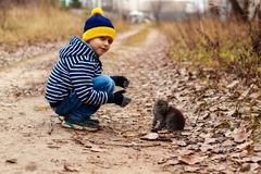 Jeune homme avec le chat pelucheux Photo stock