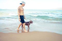 Jeune homme avec le terrier de pitbull américain de chien marchant sur la plage tropicale Images libres de droits