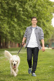 Jeune homme avec un chien marchant en parc Photographie stock