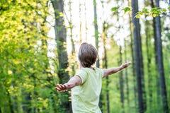 Jeune homme célébrant la nature Photo stock
