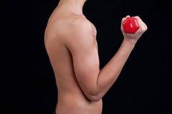 Jeune homme convenable s'exerçant avec l'haltère Photo stock