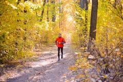 Jeune homme courant sur Sunny Trail dans bel Autumn Oak Forest Images libres de droits