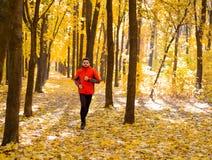 Jeune homme courant sur Sunny Trail dans bel Autumn Oak Forest Photo stock