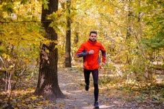 Jeune homme courant sur Sunny Trail dans bel Autumn Oak Forest Photos libres de droits
