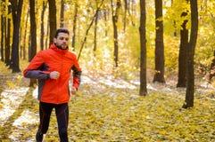 Jeune homme courant sur Sunny Trail dans bel Autumn Oak Forest Image libre de droits