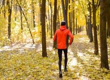 Jeune homme courant sur Sunny Trail dans bel Autumn Oak Forest Images stock