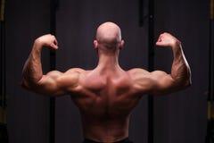 Jeune homme déchiré chauve en bonne santé avec de grands muscles posant dans le gymnase, vi photo libre de droits