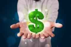 Jeune homme d'affaires présent le symbole dollar rougeoyant vert Images libres de droits