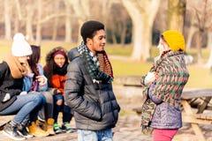 Jeune homme d'afro-américain parlant avec l'ami féminin dehors Photo libre de droits