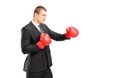 Jeune homme dans le procès avec les gants de boxe rouges prêts à heurter Photographie stock libre de droits