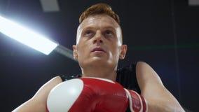 Jeune homme de boxeur de portrait dans les gants rouges parlant ensemble le repos dans le club de combat Boxeur en sueur détendan banque de vidéos