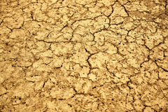Jeune homme de sécheresse Photo stock