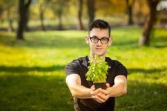 Jeune homme en verres se reposant dans un parc et des mains de bouts droits avec le pot de basilic sur le fond vert Mode de vie d photos stock