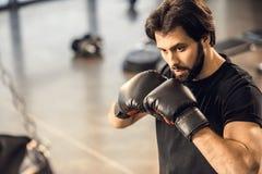 jeune homme focalisé beau dans l'exercice de gants de boxe photo stock