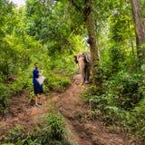 Jeune homme guidant un éléphant sur un chemin de jungle de Chiang Mai dedans image stock