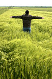 Jeune homme libre dans un domaine de blé Photographie stock libre de droits