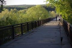 Jeune homme marchant avec son chien sur le vieux pont Photographie stock libre de droits