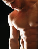 Jeune homme musculaire en bonne santé Images libres de droits