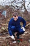 Jeune homme plantant l'ail de l'hiver photo stock