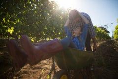 Jeune homme poussant son amie heureuse dans la brouette au vignoble Photos libres de droits