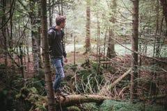 Jeune homme restant dans la forêt Photo stock