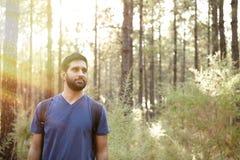 Jeune homme sérieux dans une forêt de pin Photos stock