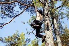 Jeune homme s'élevant sur l'arbre dans la fin de forêt  Image stock