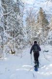 Jeune homme snowshoeing en hiver, dans la banlieue noire orientale du Québec Image stock