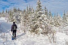 Jeune homme snowshoeing en hiver, dans la banlieue noire orientale du Québec Photographie stock
