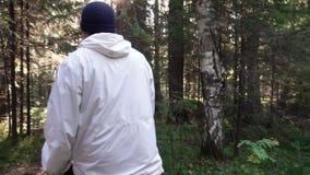 Jeune homme sur des vacances en camping Concept de la liberté et de la nature Vue de l'homme du dos marchant en bois le long de c banque de vidéos