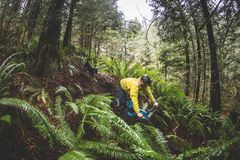 Jeune homme sur le vélo de montagne Image libre de droits