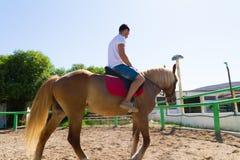 Jeune homme sur un cheval brun-blond dans l'équitation Image libre de droits