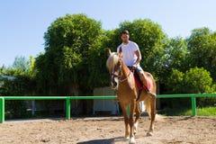 Jeune homme sur un cheval brun-blond dans l'équitation Photographie stock