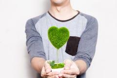 Jeune homme tenant un pot d'arbre dans la coeur-forme dans le blanc Photos libres de droits
