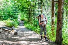 Jeune homme trimardant avec le sac à dos dans la forêt Photos stock