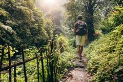Jeune homme trimardant dans la forêt Image libre de droits