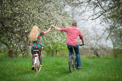 Jeune jardin affectueux de bicyclettes d'équitation de couples au printemps Photos stock