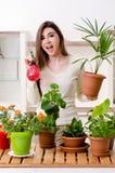 Jeune jardinier f?minin avec des usines ? l'int?rieur photo libre de droits