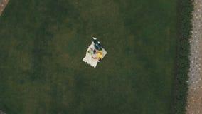 Jeune jeu de garçon avec le père sur la pelouse, tir aérien clips vidéos