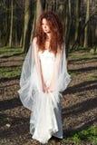 Jeune jeune mariée dans la forêt Photos stock