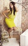 Jeune jolie femme intelligente posant avec une cage Photographie stock