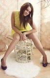 Jeune jolie femme intelligente posant avec une cage Photographie stock libre de droits