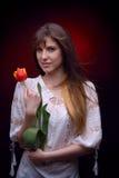 Jeune jolie femme tenant la tulipe rouge Images libres de droits
