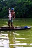 Jeune Kaapor, Indien indigène du Brésil Images stock