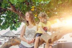 Jeune mère affectueuse heureuse et son fils d'enfant en bas âge sur la promenade photo libre de droits