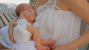 Jeune mère allaitant le bébé nouveau-né banque de vidéos