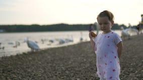 Jeune mère avec ses filles de bébé alimentant le cygne et les petits canetons oiseaux pain à une rivière portant la robe pointill banque de vidéos